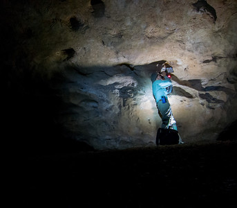 Photographing amblypygids in the cave.